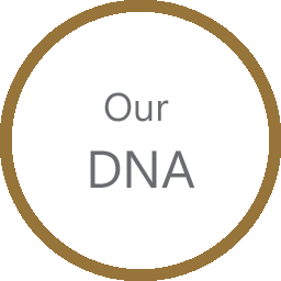 AboutUs DNA