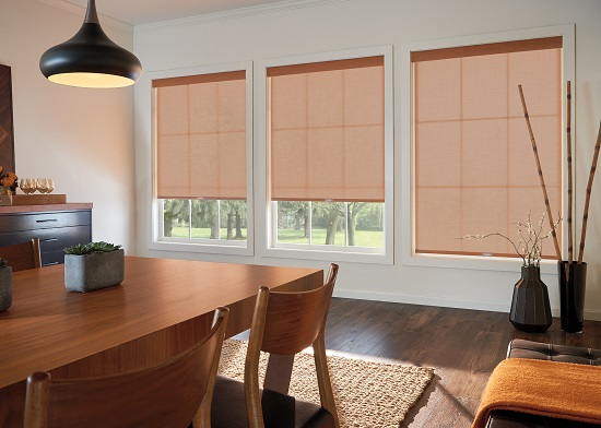 Roll up and Solar Shades Designed for your Houston Home